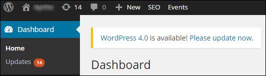 check-wordpress-upgrade-available